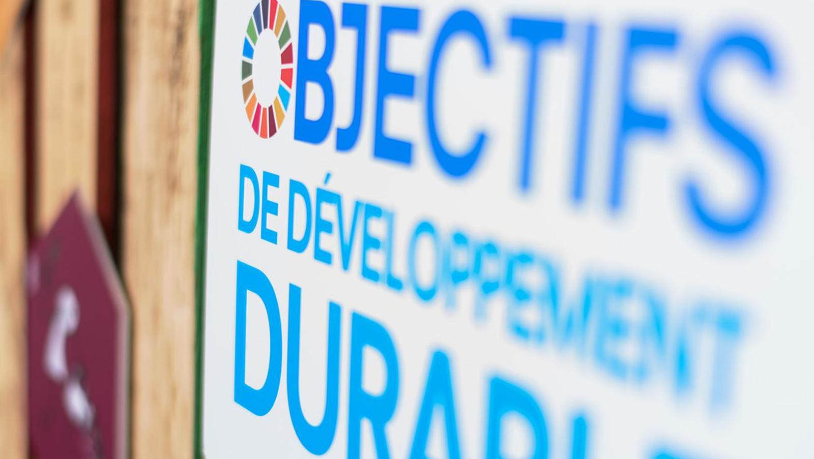 Partnering for Progress: How Real-time Social Data Advances the SDGs